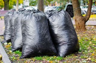 Picture of 26x44 Privo Heavy Duty Recycled Refuse Sacks